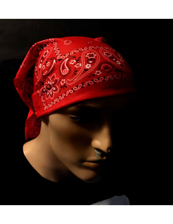 Tube Bandana/ Paisley Red