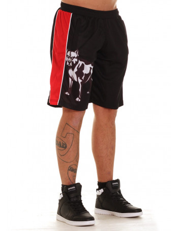 FAT313 Legend Shorts