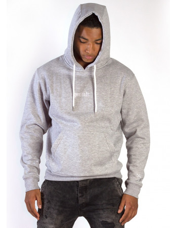genialt. Hoodie BrandLogo Heather Grey