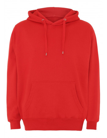 Hoodie All Red Plain
